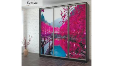 Шкаф-купе «Китами» с фотопечатью