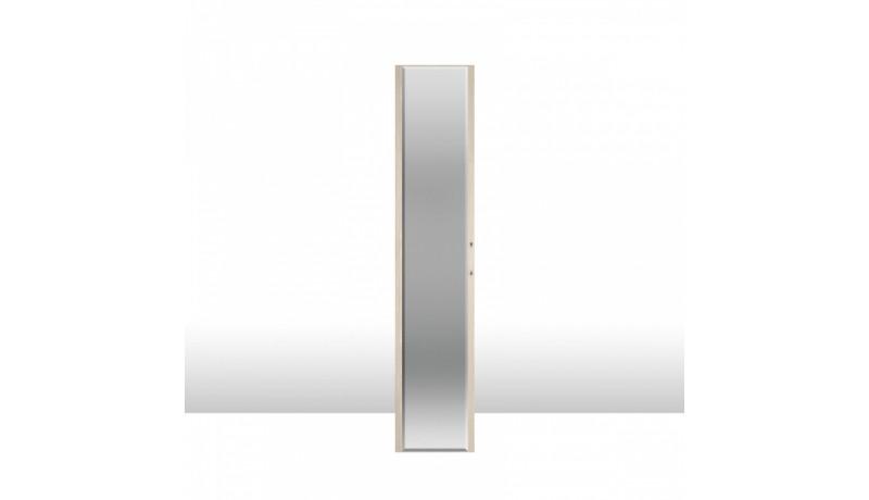 фасад двери с зеркалом